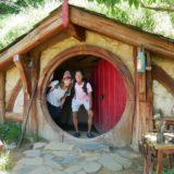 New Zealand【4日目】<北島4日目>オークランドからマタマタへ。有名な、ロードオブザリングのロケ地『ホビット村』観光!そしてワイレレ滝トレッキング。