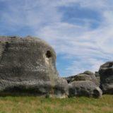 〈2カ国目〉ニュージーランド/ New Zealand【13日目】<南島7日目>寄り道しながらダニーデンへ移動!ダニーデンで修理屋さんへ!もう修理のやり取りしんどい。。。市内観光、市内のフリーキャンプ泊。