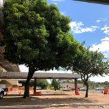 <8ヵ国目>ブラジル/Brazil【南米92日目】プエルトイグアス~フォスドイグアス~カンポグランジ~ボニートへバス移動。その1
